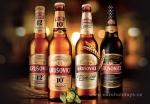 Индивидуальная экскурсия на пивоваренный завод Krušovice (Крушовице) с дегустацией
